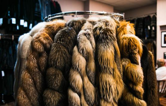 A fur fit for The Queen of Soul